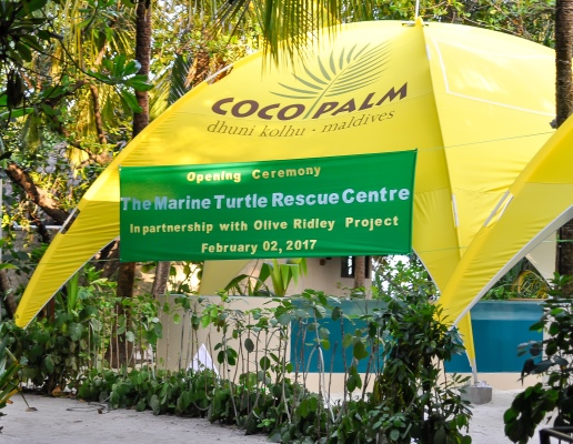 Coco Collection opens Maldives' first Turtle Rescue Centre in partnership with the Olive Ridley Project