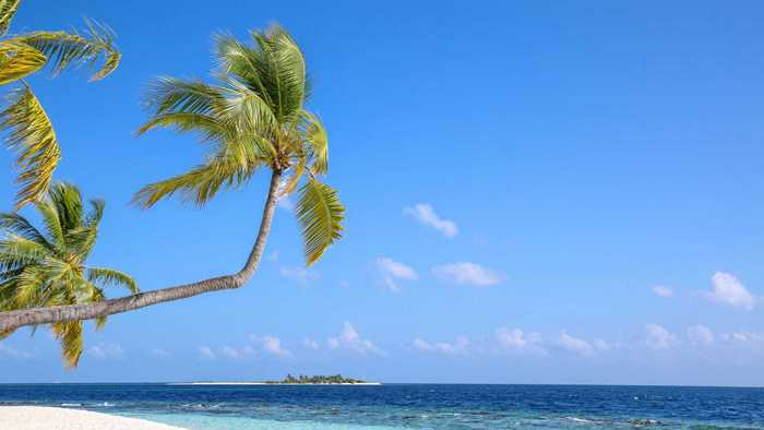 Arabia Travel & Tourism Services: Experts in Maldives honeymoon, luxury holidays