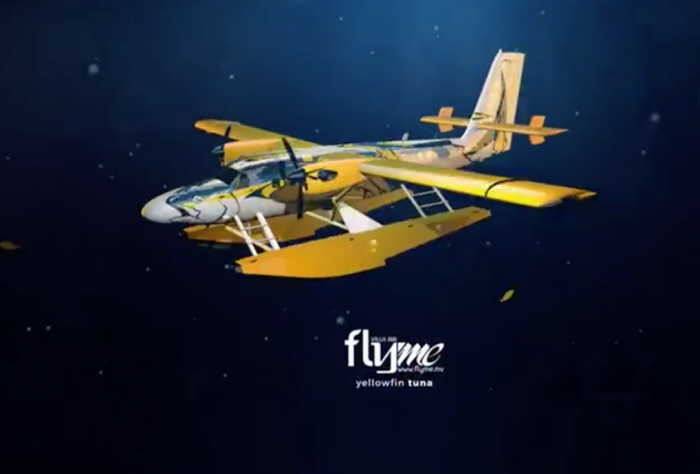 Flyme to begin seaplane operations with 'Flying Yellowfin Tuna' floatplanes