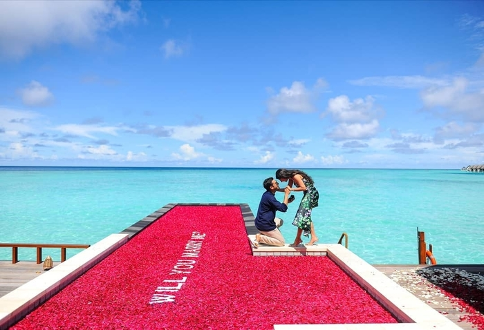 A 'pool of rose' proposal in Maldives