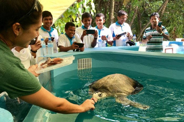 Coco Collection, Olive Ridley Project celebrate turtle rescue centre's third anniversary