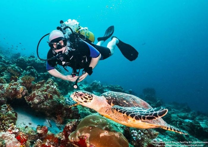 One&Only Reethi Rah Maldives partners with Olive Ridley Project to open turtle rehabilitation centre