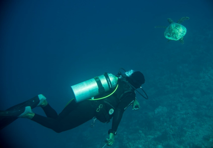 Ellaidhoo Maldives by Cinnamon introduces night diving experience